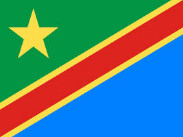 Flag of the United Republic of the Congo