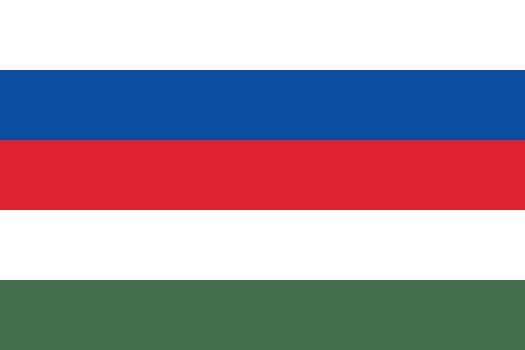 Flag of Slovaks in Hungary