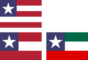 Variant flags of the United States and NAU