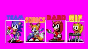 Team Sonic's Band GIF