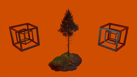 TREE  /// The orange-red project Part 7