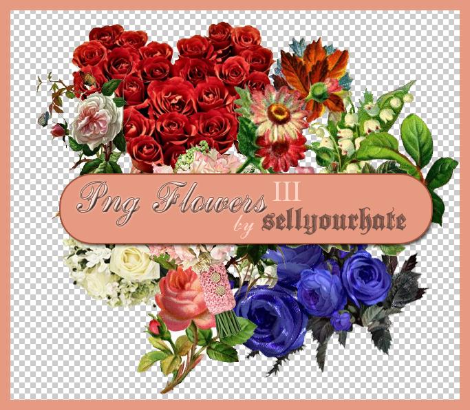 PNG's: Flowers III