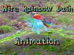 Wire Rainbow Dash Animation02