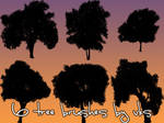 6 Tree Brush Set