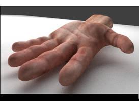 Hand Model + Rig + Animation by DennisH2010