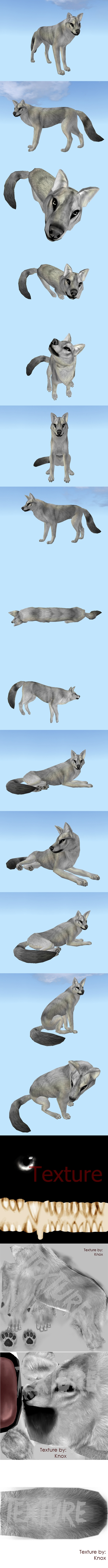 Canine texture semi_realistic by NorthernRed
