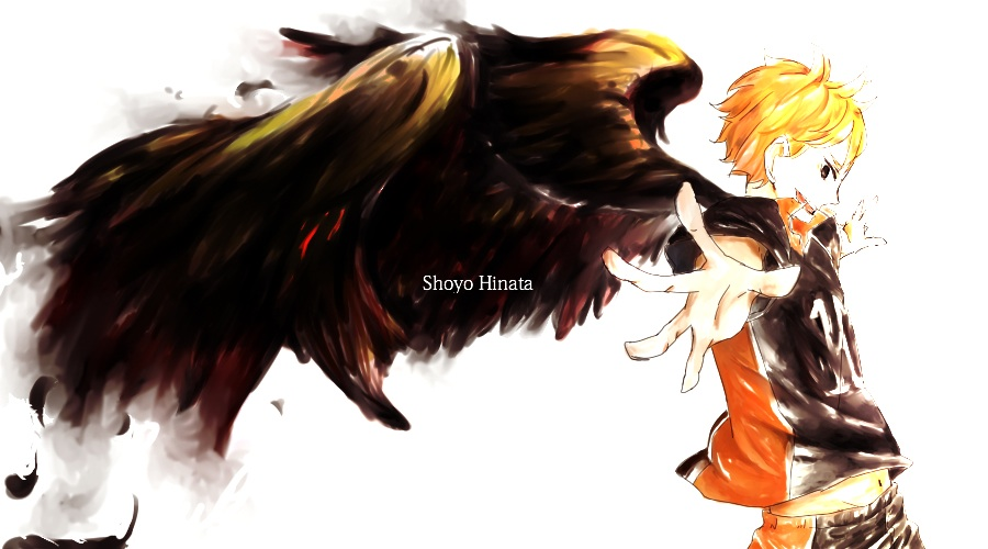 Hinata shouyou x reader : Wings of promise by crystallove13