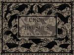 Crows Photoshop Brushes