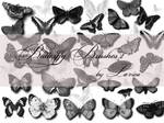 Butterfly Brushes Set 2