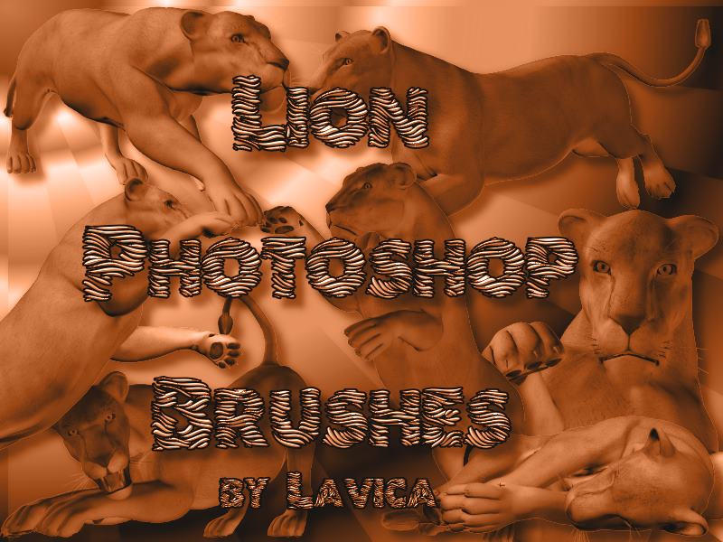 Lion Brushes by Lavica-Photoshop