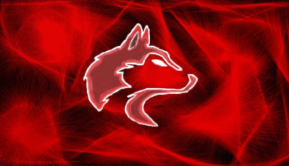 red wolf drawing