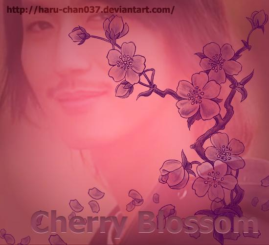 cherryblossoms