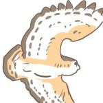 Barn Owl Flight Animation by craeve