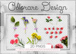 Flowers Png Pack 103