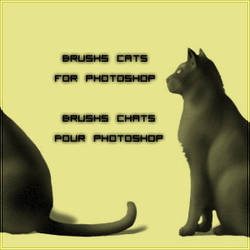 Brushs cats for photoshop