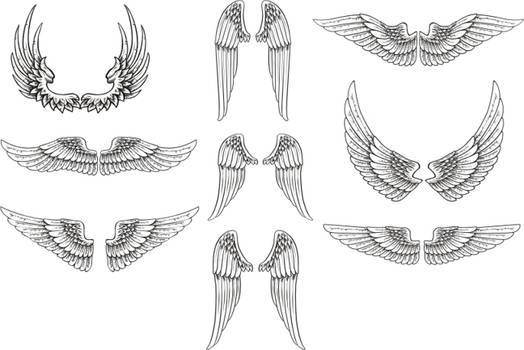 Free Vector Wings Pack