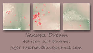 Sakura Dream by Martini-Tiger-Bianco