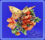 Butterfly Flower Vignette PSD