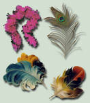 Feathers Pack psd