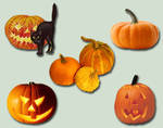 Pumpkins and Jack O Lanterns Pack psd