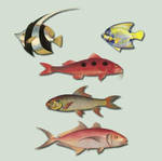 Fish Pack psd