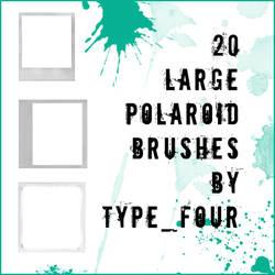 20 large size polaroid brushes by withmycamera