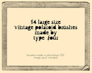 vintage polaroid brushes by withmycamera