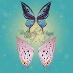 Butterfly Wings 3