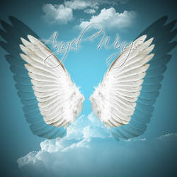 Angelwings 2