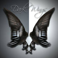 Dark Wings 2 by cocacolagirlie