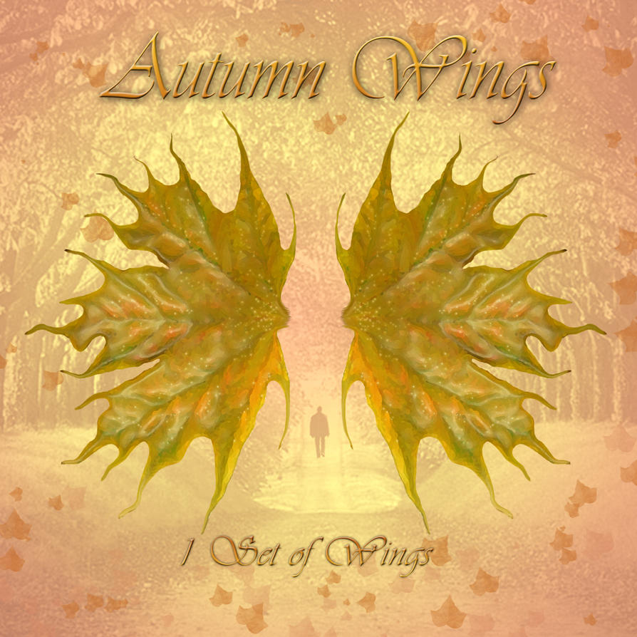 Autumn Wings 1 by cocacolagirlie