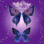 Butterfly Wings 1-2