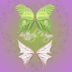 Butterfly Wings 2-2