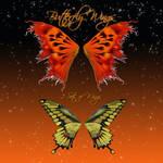 Butterfly Wings 6-2