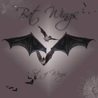 Bat Wings I