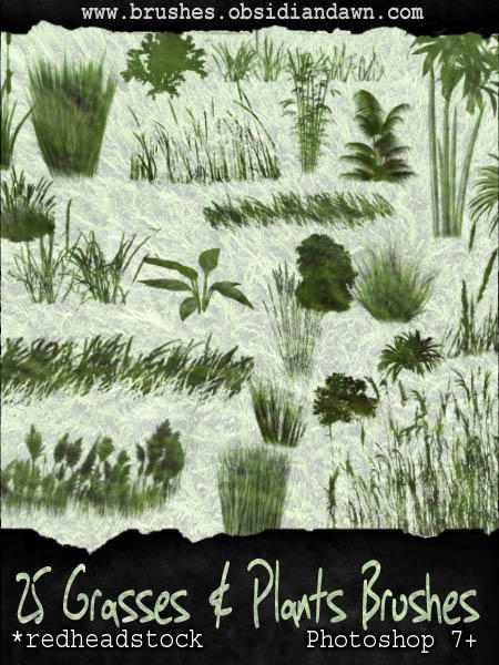 Grasses N Plants GIMP Brushes by Project-GimpBC