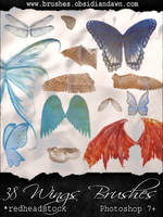 GIMP Wings Brushes by Project-GimpBC