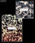 abstract grunge brushes 2