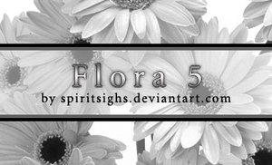 Spiritsighs Floral Brushes