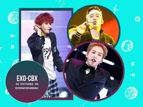#8009 EXO-CBX Photopack#3