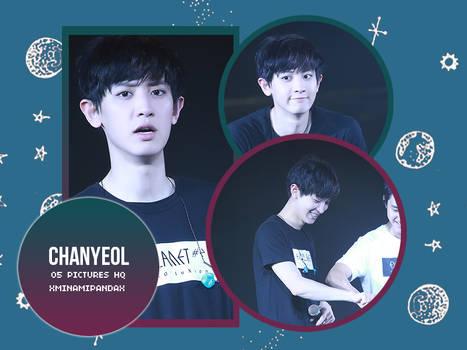 #8070 Chanyeol(EXO) Photopack#06