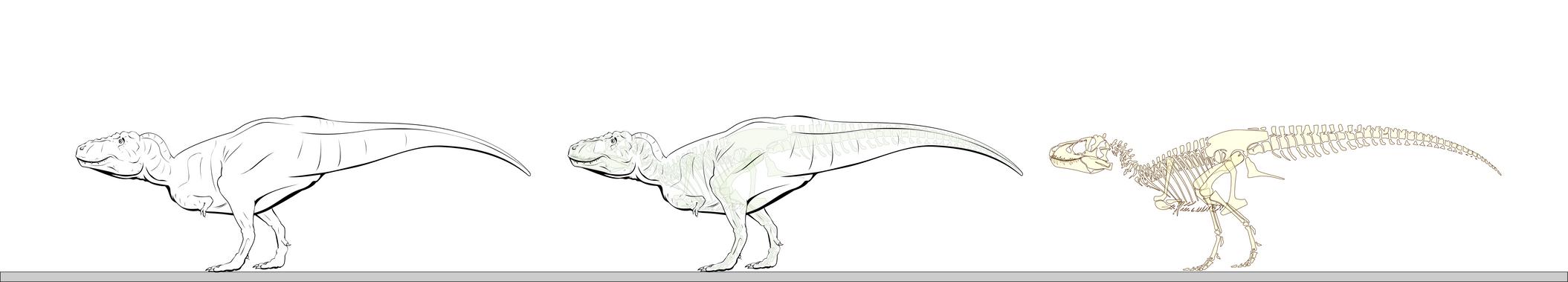 WIP new T Rex. by oghaki