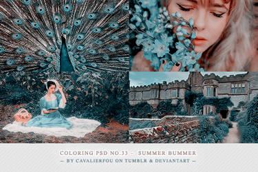 Psd #33 - Summer Bummer