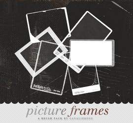 Picture Frame Brushes