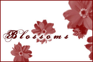 Blossoms by marvin9martian