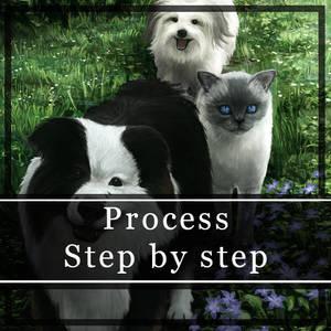 Pet Group Portrait Process