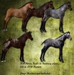 Fantasy Foals PSD set 1