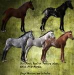 Fantasy Foals Psd Set 2 by Direwrath