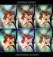 Vintage Effect - Ps Actions - by photoshop-stock