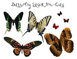 Pre-Cut Butterfly Stock by GloomWriter